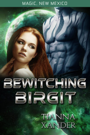 Book Cover: Bewitching Birgit